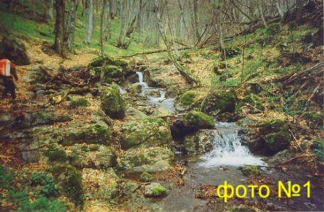 ручьи